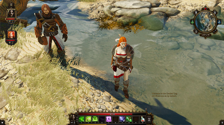 Divinity Original Sin Enhanced Edition Game Review On
