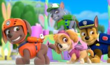 PAW Patrol: Pups Save the Bunnies (DVD)