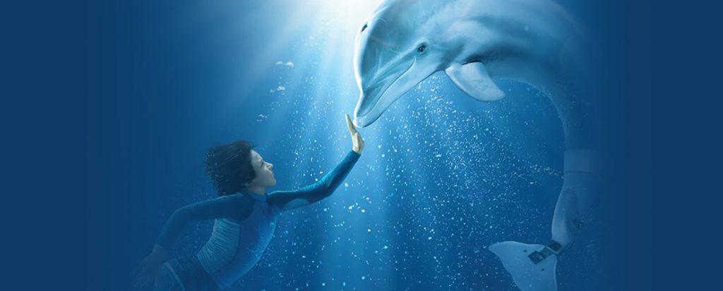 Dolphin Tale (Blu-ray, DVD)