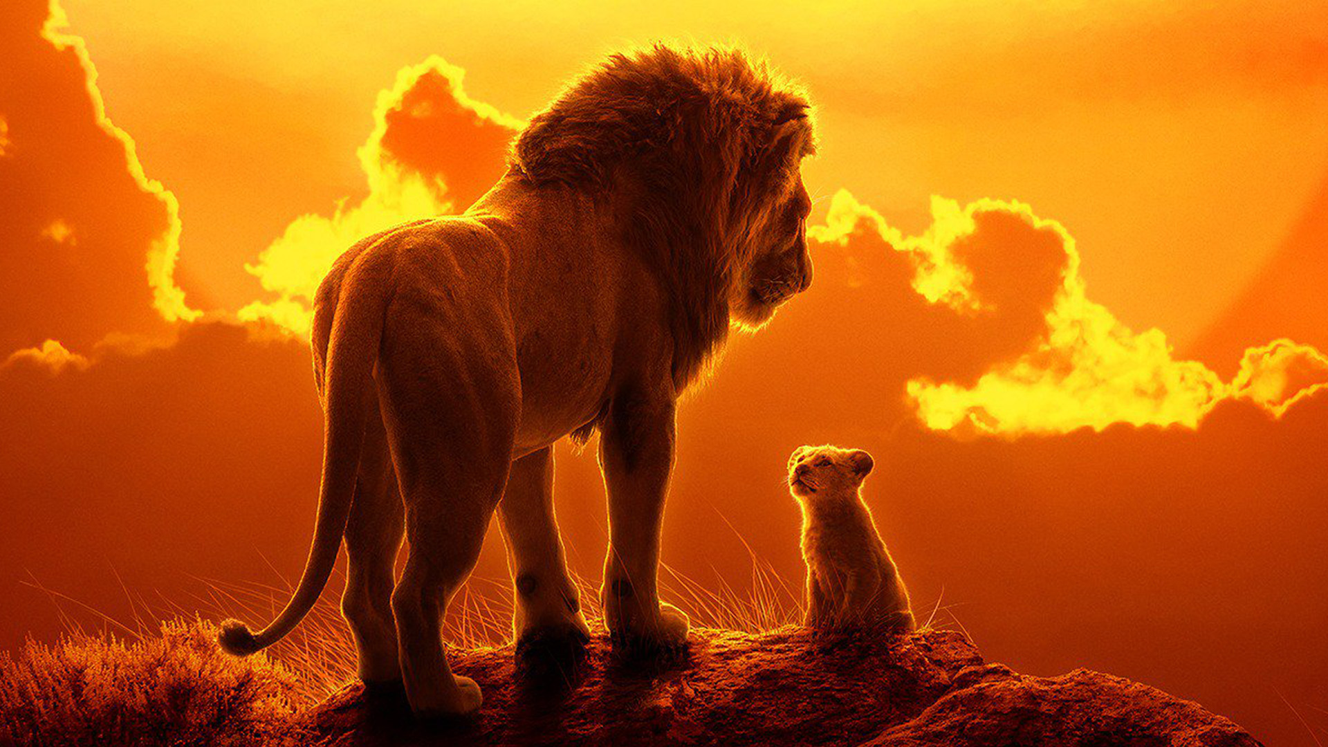Disney's The Lion King 2019: Royal Roar or Realistic Bore?